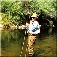 Fishing licenses for lake tahoe fishing in tahoe national for Fishing license nevada