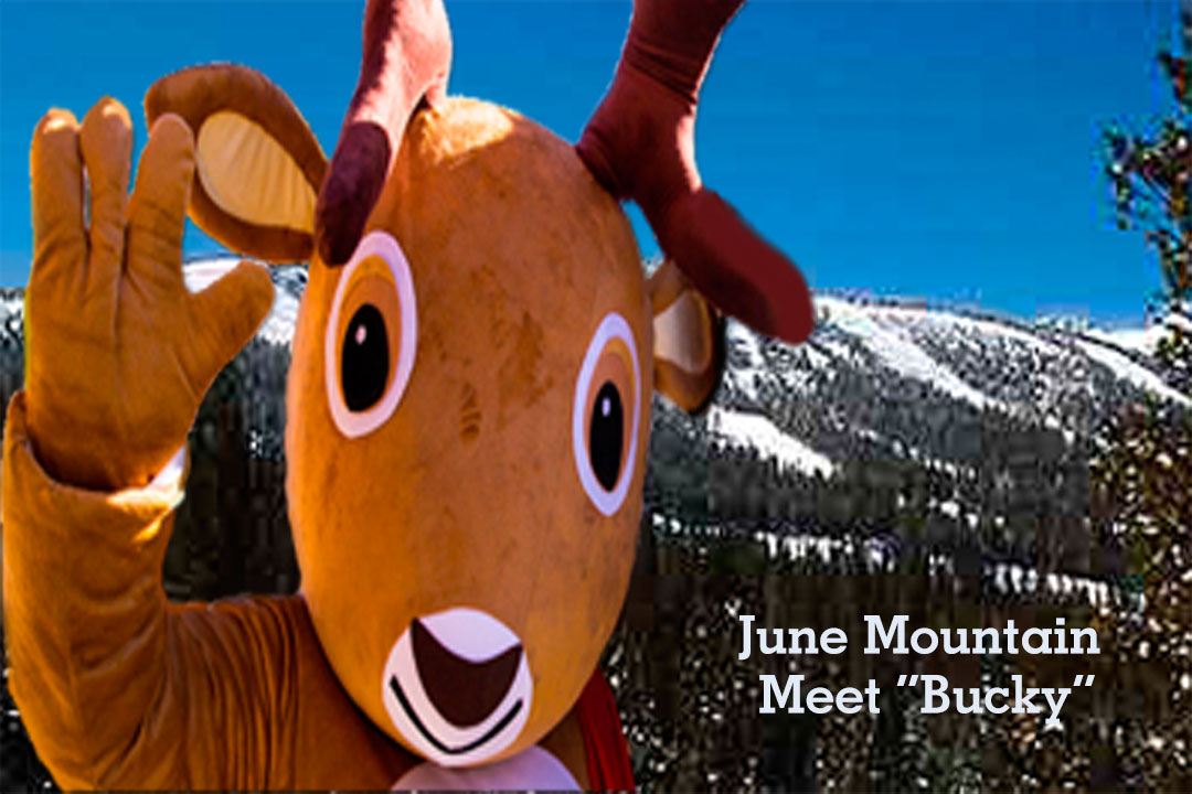 Bucky, June Mountain Mascot