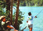 Mammoth Lakes fishing for families