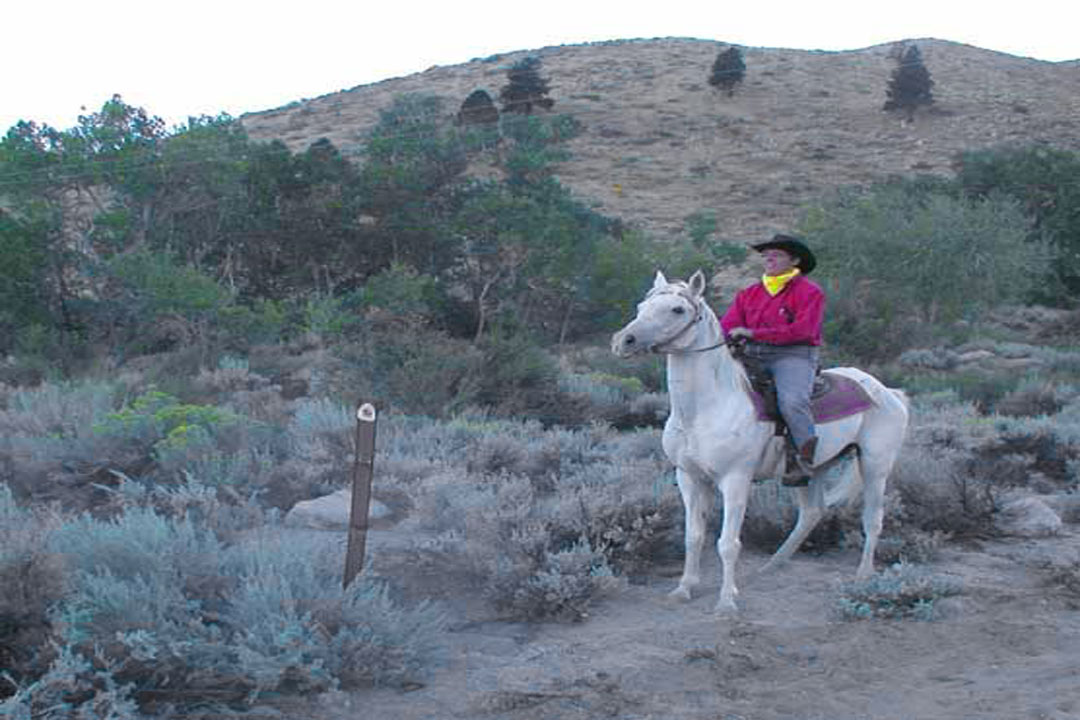 Horseback Riding Rentals in Mammoth