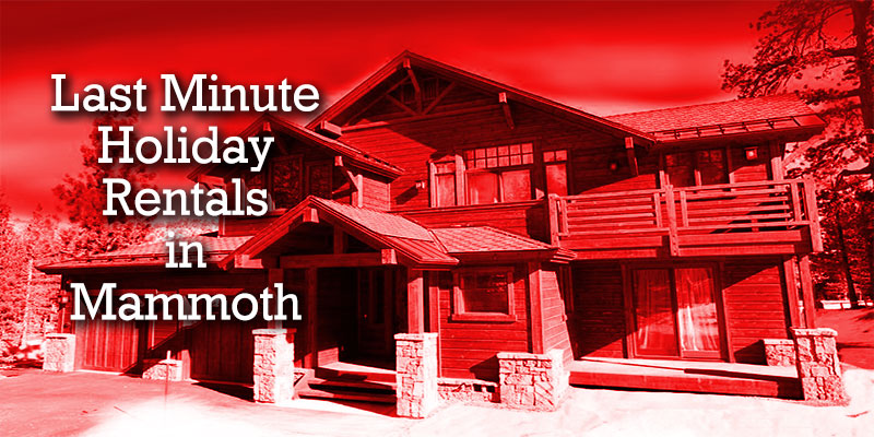 Vacation Rentals for the Holidays