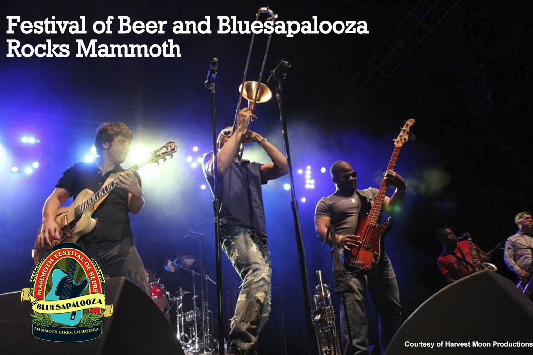 Mammoth Festival of Beers and Bluesapalooza Rocks