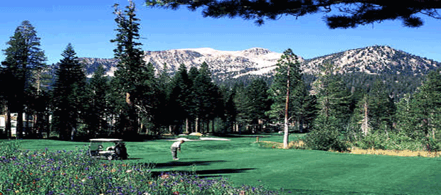 a round of golf in summer in Mammoth